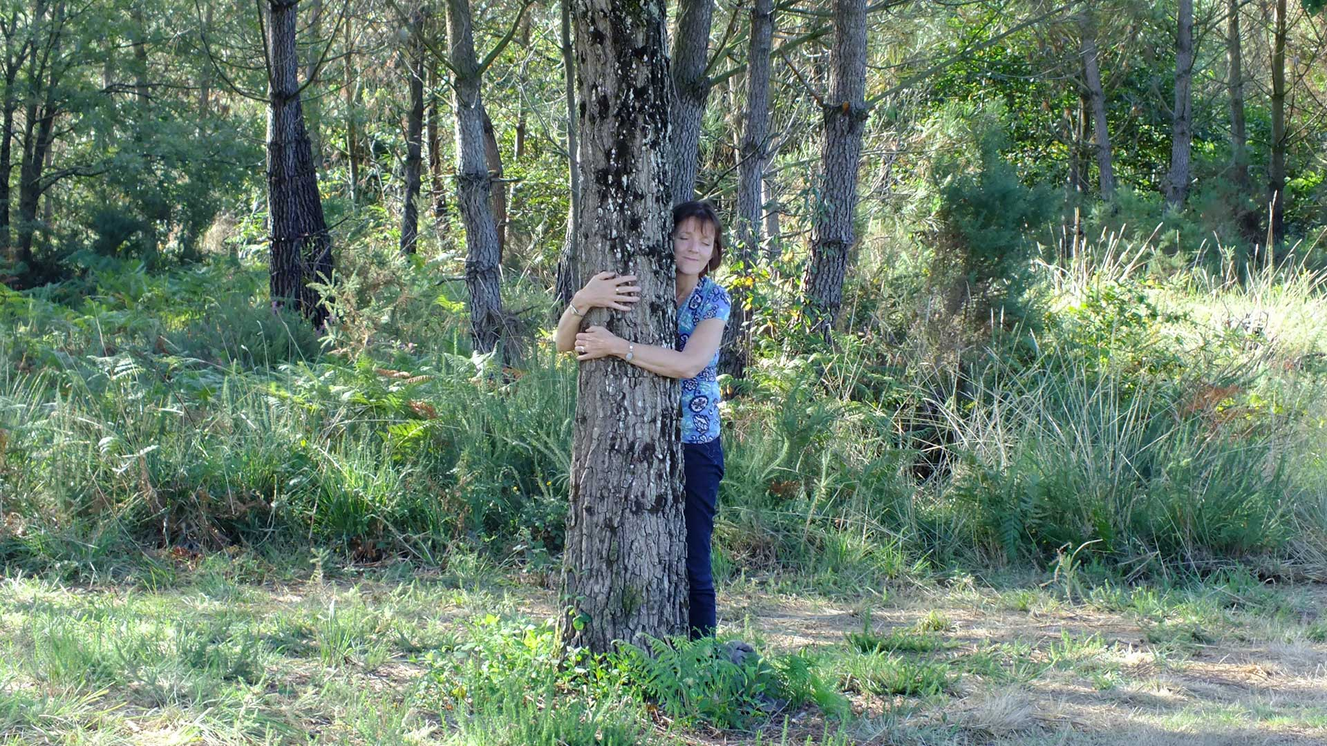 sara estelle tree hug image