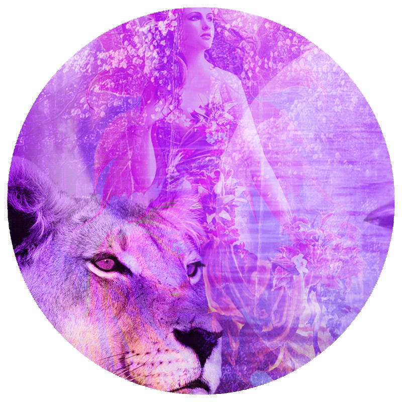 lioness with faerie and moon icon image