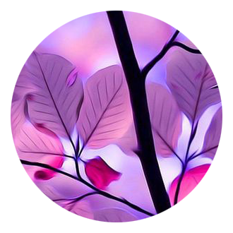 purple leaves icon image