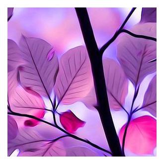 purple leaves icon image